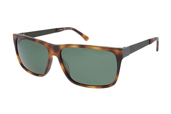 Strellson Sonnebrille 6205 300 Polarisiert - Bügle mit Carbon